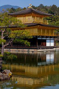 花の金閣寺
