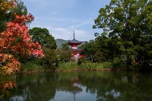 塔のある風景「嵯峨野・大覚寺 祇園・八坂の塔」