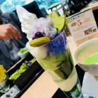 京都で美味しい!
